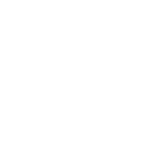 Google Newslab Fellow
